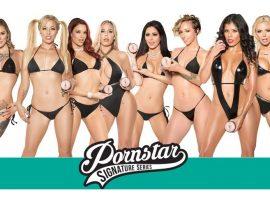 Pornstar Strokers sex toys